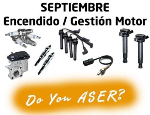 Las 12 causas ASER – Gestión motor